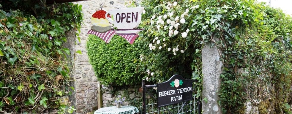 Cream Teas at Higher Venton Farm, Widecombe in the Moor, Dartmoor